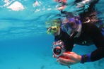 Book a Photo Disc of your diving adventure